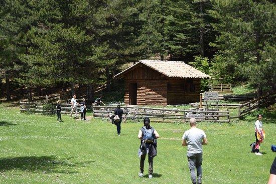 Madonie National Park, Italy: Escursione a Valle Giumenta