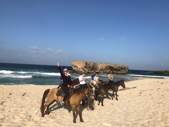 Thanks for choosing to ride with us! We welcome your feedback! #aruba #horsebackriding #beach #tripadvisor www.rancholocoaruba.com