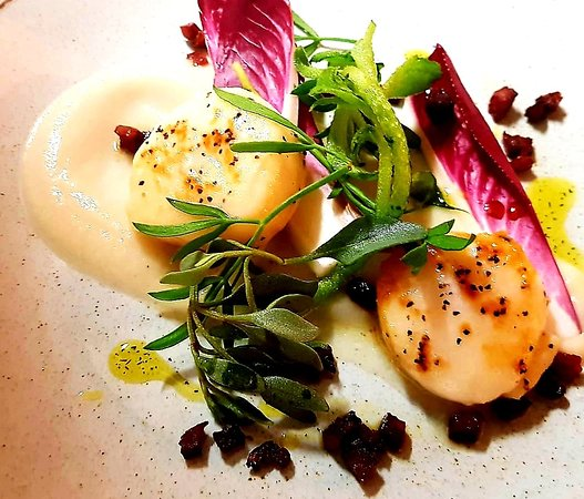 Grundisburgh, UK: Pan seared scallops, chicory, chorizo and cauliflower puree