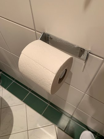 Kuhtai, Αυστρία: Offene Toilettenpapierrolle