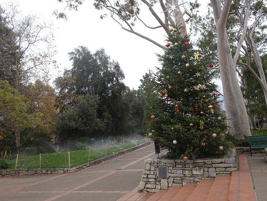 Mission Plaza: A little post-holiday sparkle in the plaza