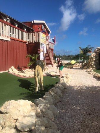 Flamingo Adventure Golf Foto
