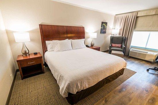 Hilton Garden Inn Bowling Green 100 ̶1̶3̶4̶ Updated