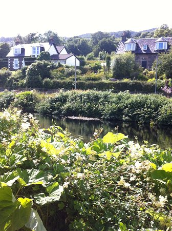 Argyll and Bute, UK: A lovely walk beside the Crinan Canal , Adrishaig to Lochgilphead