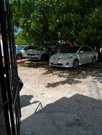 Taxis Dorado