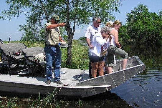 Small-Group Airboat Swamp Adventure...