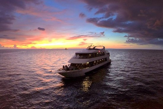 2.5-3 Hour Evening Yacht Cruise with...
