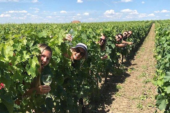 Vinsmakings- og slottstur med liten...