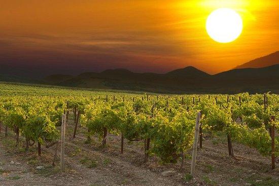 Eger Wine Country Dagstur fra...