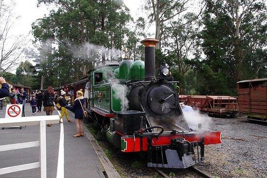 膨胀比利火车与可选的企鹅游行或墨尔本城市之旅