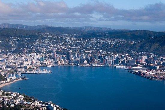 Landausflug Wellington: Stadtrundfahrt