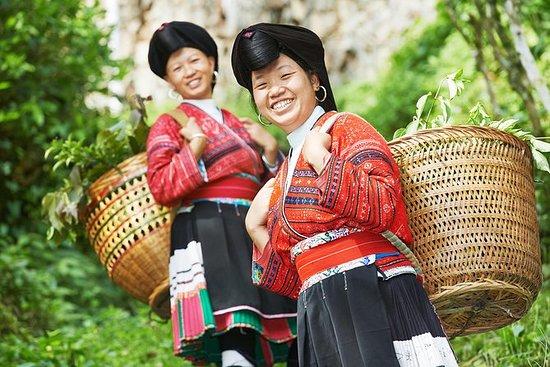 為期4天的桂林私人旅遊包括漓江和龍脊梯田