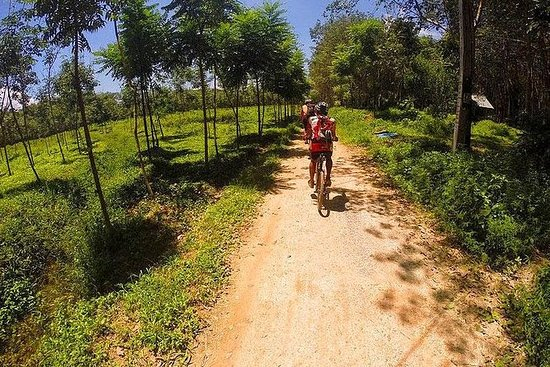 Krabi Countryside Eco Cycling Tour...