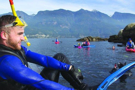 Vancouver Snorkel og Kajakk Adventure