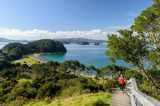 The 10 Best Bay Of Islands Boat Tours Amp Water Sports