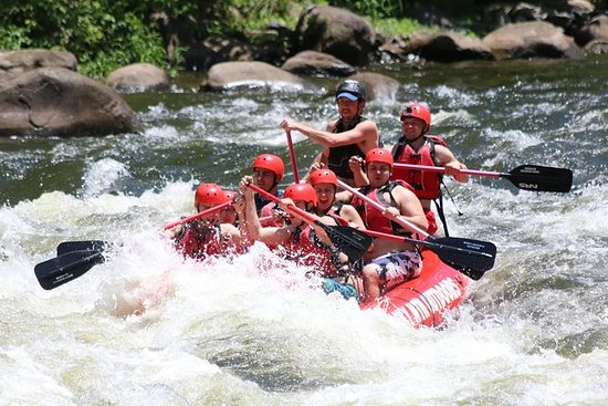 Viagem de rafting no rio Pigeon...