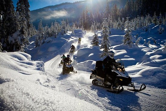 Tour de Cruiser Snowmobile para os...