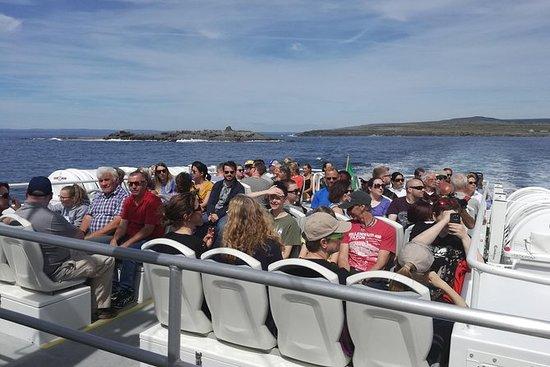 Rundtur båttransport til Inis Oirr i...