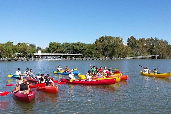 Excursion de 3heures en kayak à...