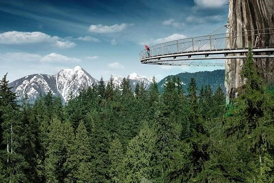 Private Tour: Vancouver Sightseeing and Capilano Suspension Bridge: Vancouver Private Day Tour and Capilano Suspension Bridge