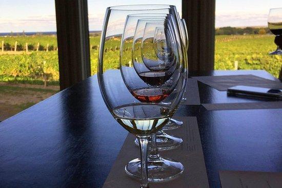 尼亚加拉全日葡萄酒之旅,尼亚加拉湖畔的午餐和可选择的乘船之旅
