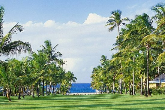 Nevis Plantation and Beach Experience...