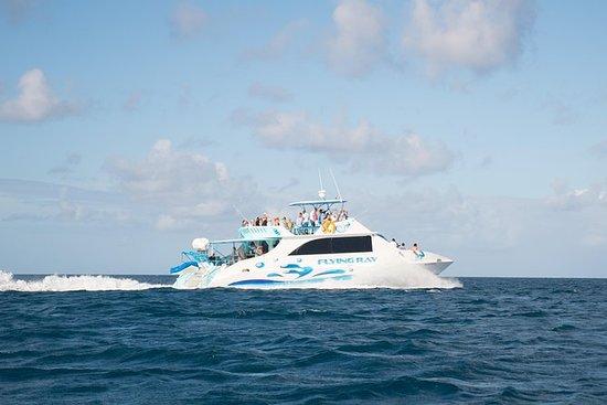 All-Inclusive Catamaran Tour til...