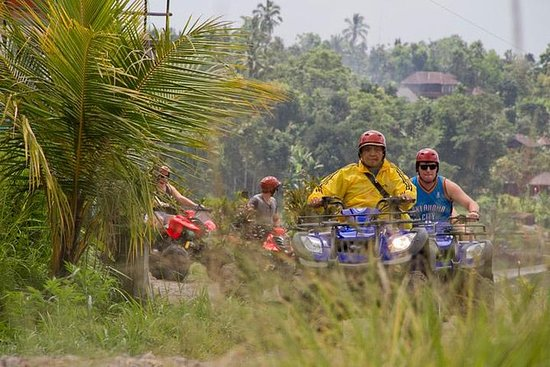 Northern Bali Highlands by ATV with...