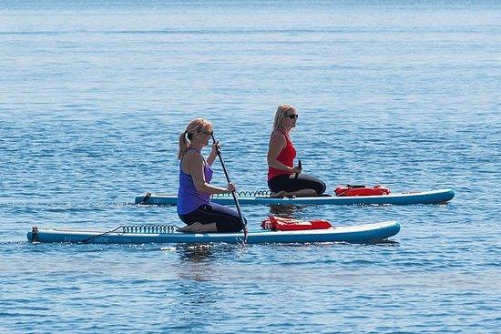 Tour in piedi di paddle con delfini e