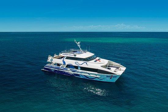 AquaQuest Great Barrier Reef Diving...