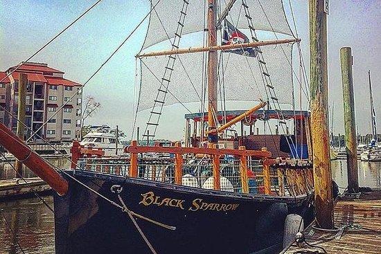 1,5-timers Pirat Ship Dolphin Tour...