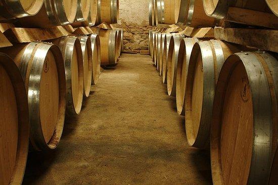 馬賽海岸遊覽 - 普羅旺斯的私人全日葡萄酒之旅
