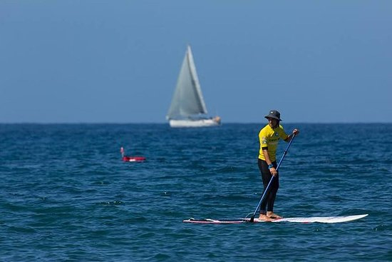 3 horas de Paddle Surf Tour en...