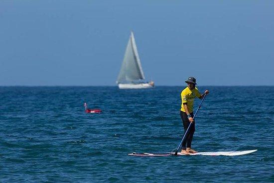 3-timers Padle Surf Tour i Meloneras