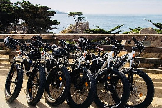3-hour Electric Bike tour, 17-Mile...