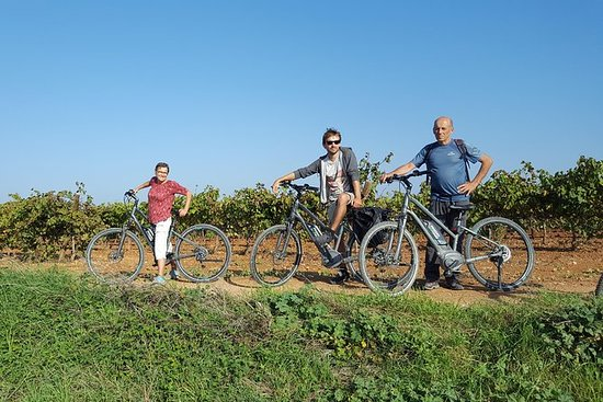 From Barcelona: E-Bike Tour in the...