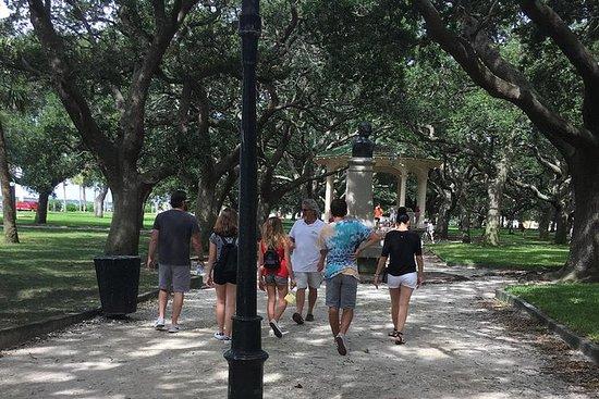 Charleston's Best History Walking Tour: Charleston's Premier Walking History Tours