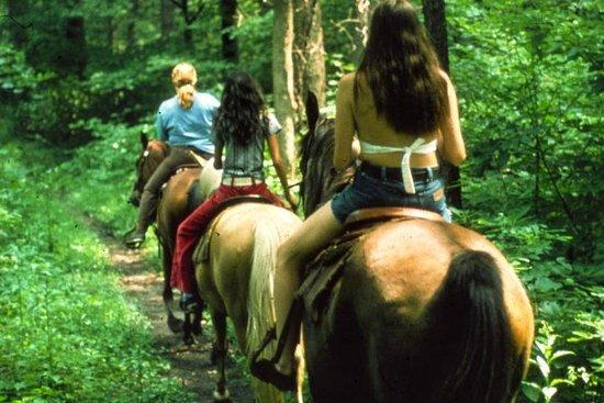 Hesteridning