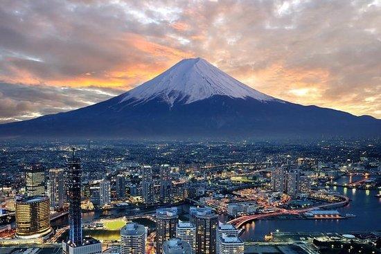 1 dag chartertur till Mt Fuji View