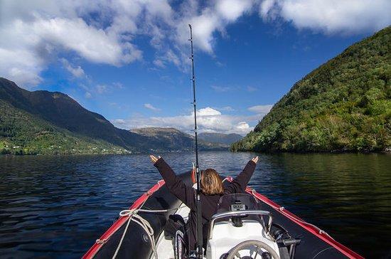 Private Fjordcruise: In der Nähe von...