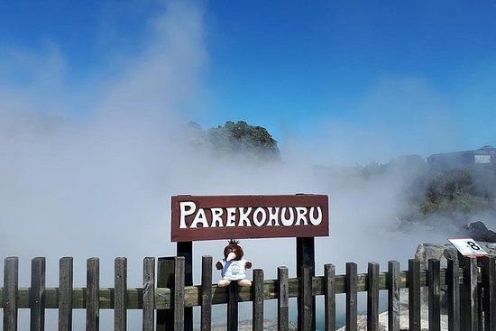 Tour Privado: Hobbiton e Rotorua com...