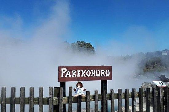 Private Tour: Hobbiton & Rotorua mit...