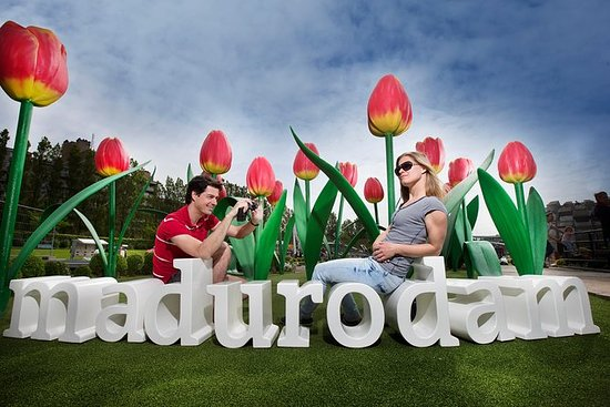 Special offer: Keukenhof tour from...