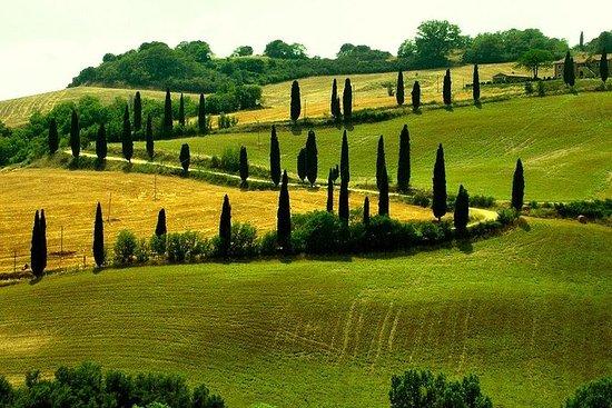 Kustexcursie naar Orvieto en Umbrië ...
