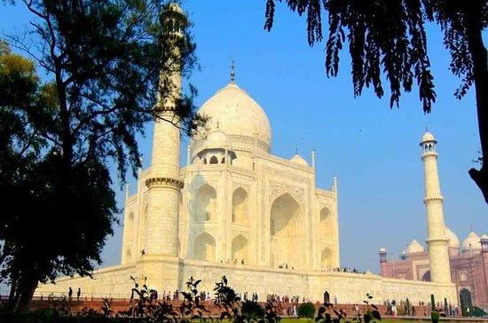 Viagem de um dia ao Taj Mahlal de Delhi...