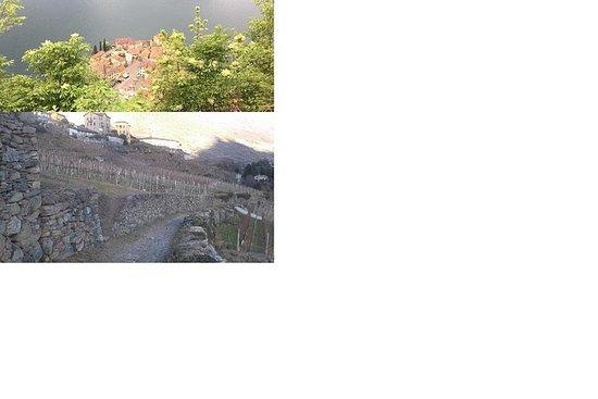 コモ湖とユネスコの乾いた石造りの壁