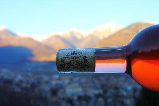 Vinprovning i Ossola Vineyards