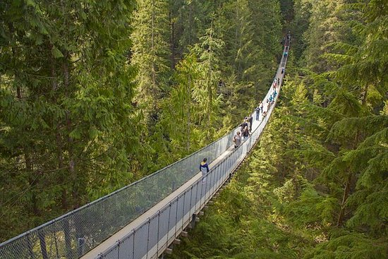 Vancouver Highlights and Capilano...