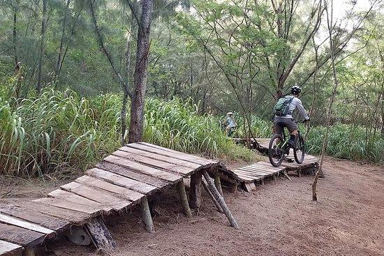 Trilhas de mountain bike em North...