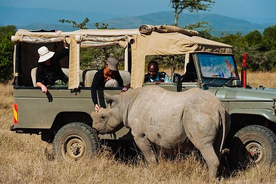 Day tour to Olpejeta Conservancy from...